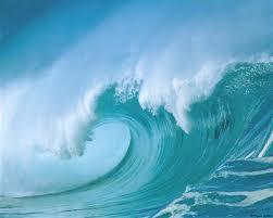 GIA ĐÌNH VẠN HẠNH : Sóng Nước
